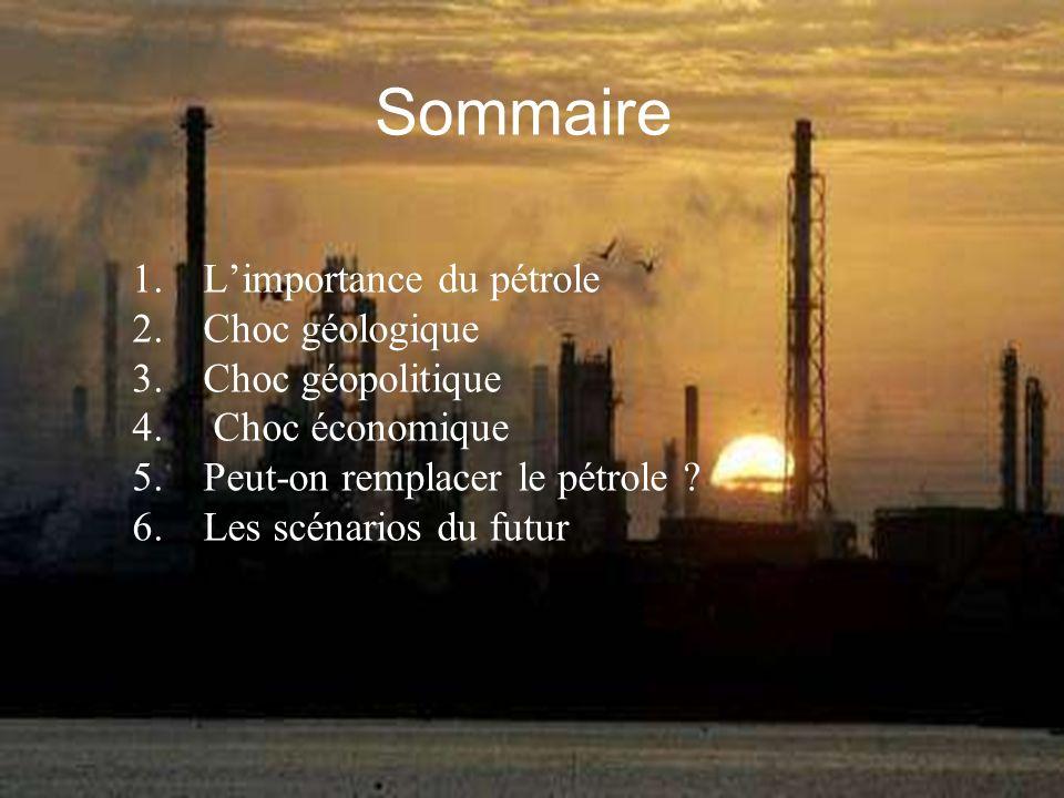 1.Limportance du pétrole 2.Choc géologique 3.Choc géopolitique 4. Choc économique 5.Peut-on remplacer le pétrole ? 6.Les scénarios du futur Sommaire