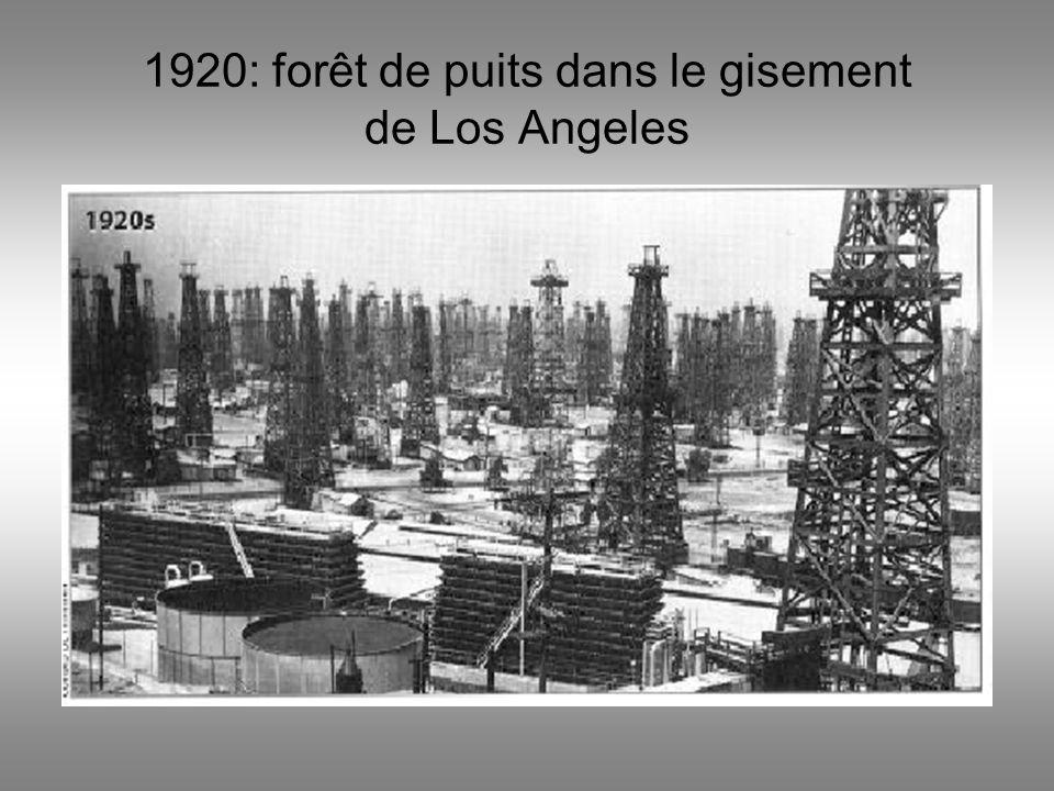 Limportance du pétrole ( source : Agence Internationale de lEnergie 2005)