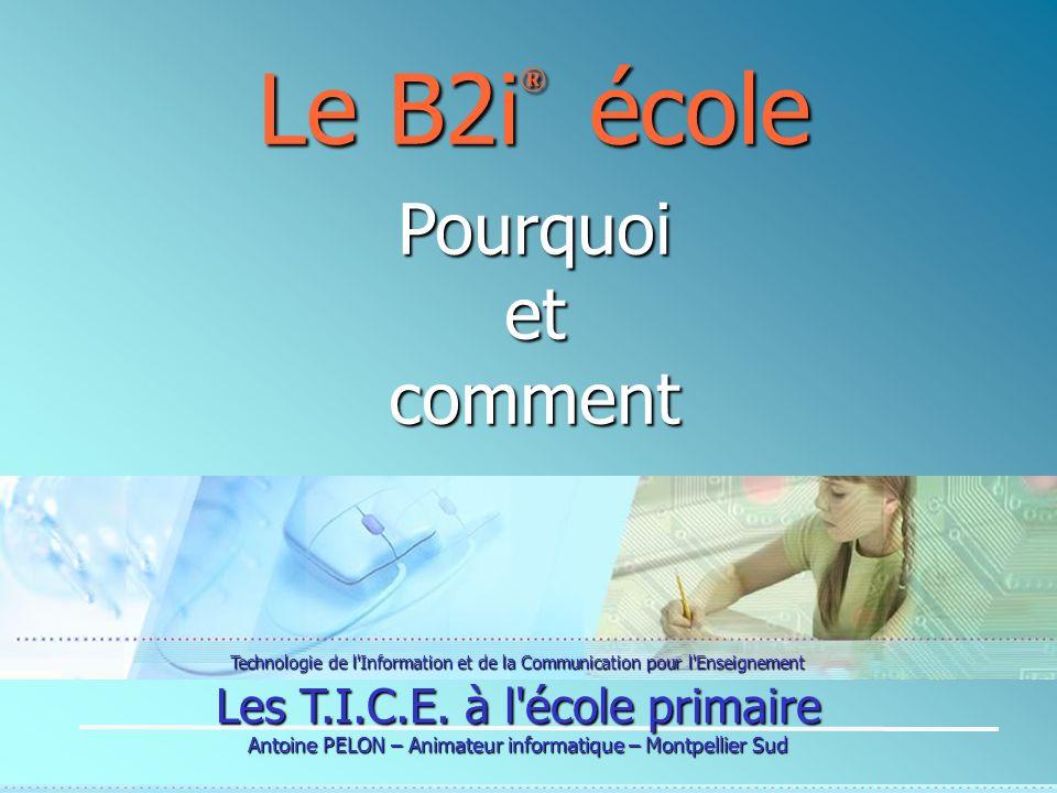 Technologie de l'Information et de la Communication pour l'Enseignement Les T.I.C.E. à l'école primaire Antoine PELON – Animateur informatique – Montp