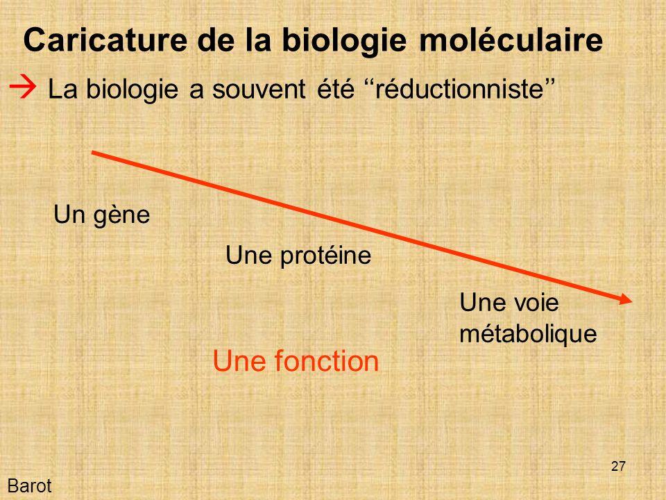 27 Barot Caricature de la biologie moléculaire La biologie a souvent été réductionniste Un gène Une fonction Une protéine Une voie métabolique