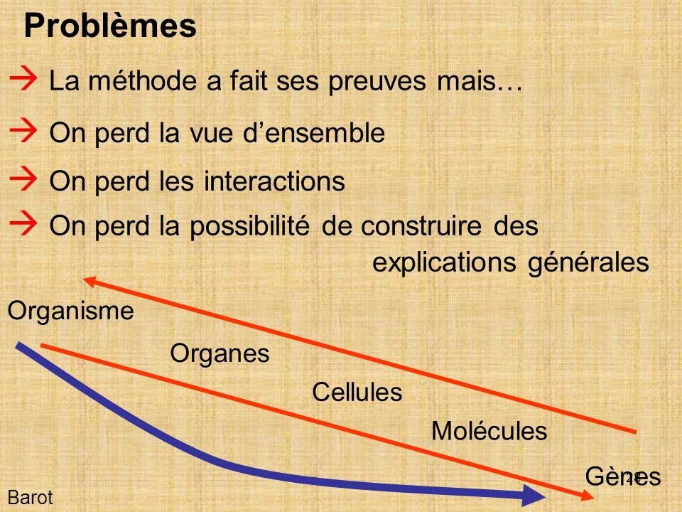 28 Barot Problèmes La méthode a fait ses preuves mais… Organisme Organes Cellules Molécules Gènes On perd la vue densemble On perd les interactions On perd la possibilité de construire des explications générales