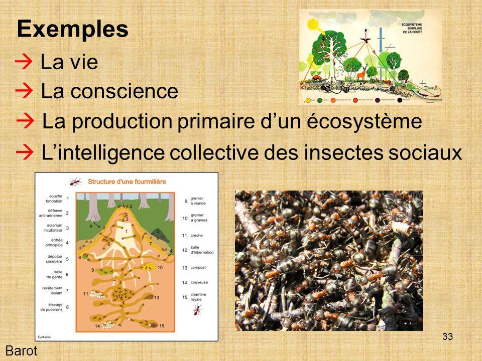 33 Barot Exemples La vie La conscience Lintelligence collective des insectes sociaux La production primaire dun écosystème
