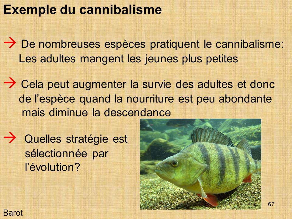 67 Barot Exemple du cannibalisme Quelles stratégie est sélectionnée par lévolution.