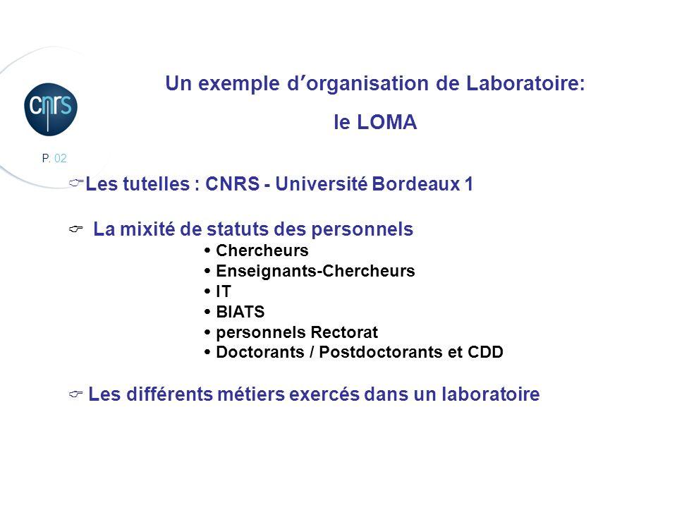 CBMN, Chimie et Biologie des Membranes et des Nanoobjets Un exemple dorganisation de Laboratoire: le LOMA Les tutelles : CNRS - Université Bordeaux 1
