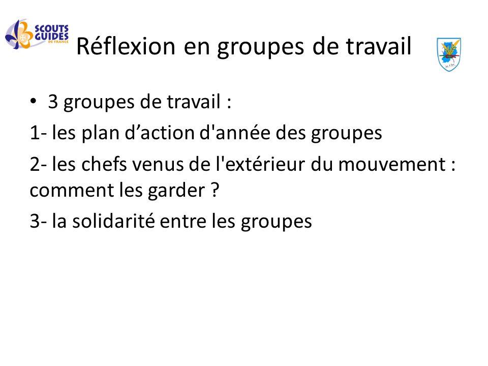 Réflexion en groupes de travail 3 groupes de travail : 1- les plan daction d'année des groupes 2- les chefs venus de l'extérieur du mouvement : commen