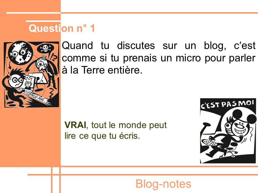Blog-notes Quand tu discutes sur un blog, c ' est comme si tu prenais un micro pour parler à la Terre entière. VRAI, tout le monde peut lire ce que tu