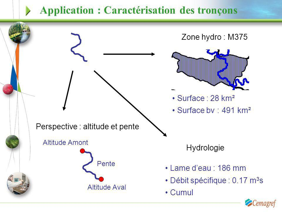Application : Caractérisation des tronçons Surface : 28 km² Surface bv : 491 km² Zone hydro : M375 Perspective : altitude et pente Lame deau : 186 mm
