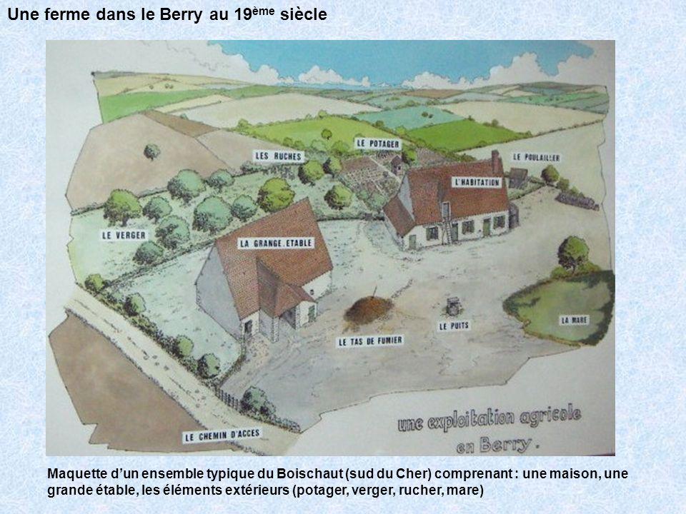 Maquette dun ensemble typique du Boischaut (sud du Cher) : La maison dhabitation (ech : 1/20°) puits Four à pain Lucarne à foin Une ferme dans le Berry au 19 ème siècle