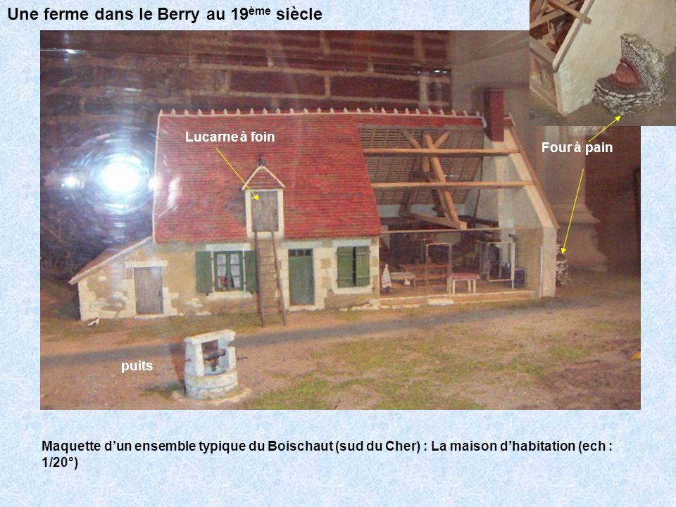 Maquette dun ensemble typique du Boischaut (sud du Cher) : La grande étable (ech : 1/20°) faîtage Couverture en tuiles plates panne chevron lattis Une ferme dans le Berry au 19 ème siècle