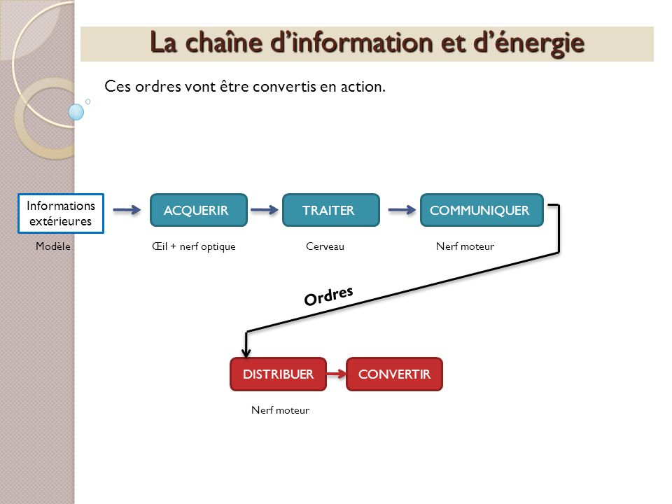 La chaîne dinformation et dénergie Ces ordres vont être convertis en action. Informations extérieures ACQUERIRTRAITERCOMMUNIQUERDISTRIBUERCONVERTIR Mo