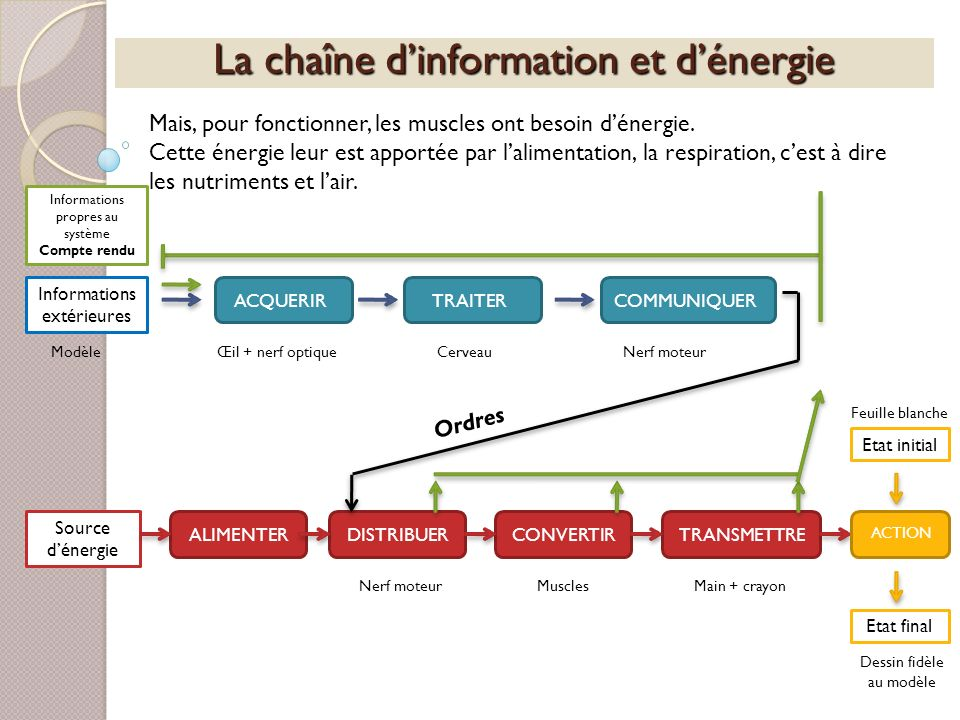 La chaîne dinformation et dénergie Informations extérieures ACQUERIRTRAITERCOMMUNIQUERALIMENTERDISTRIBUERCONVERTIRTRANSMETTRE Source dénergie ACTION E