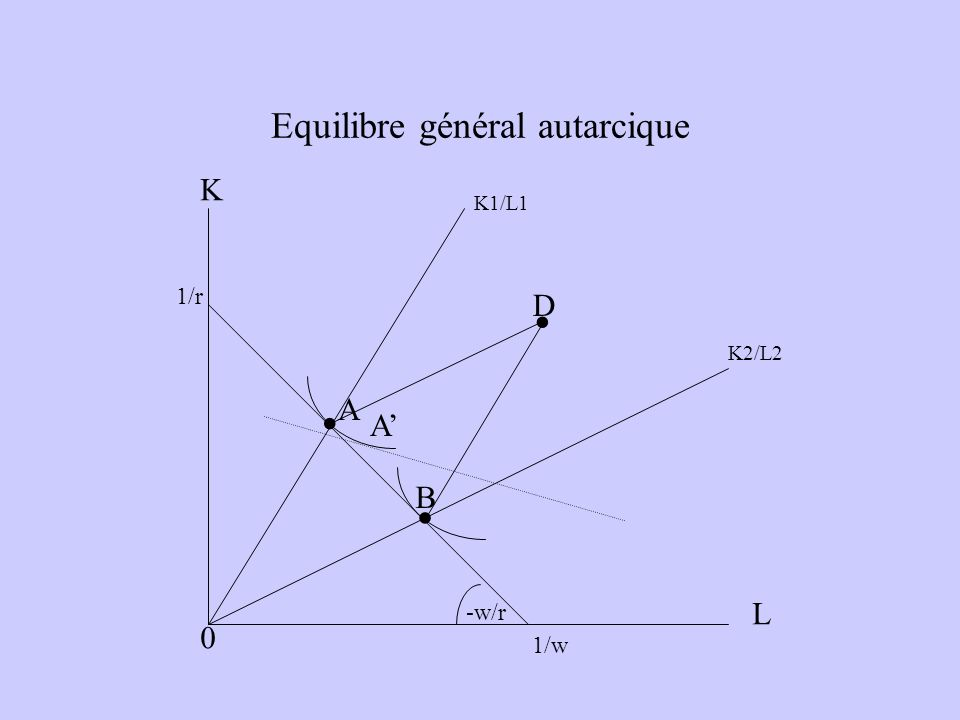 Equilibre général autarcique L K A... A B D K2/L2 K1/L1 0 1/r 1/w -w/r