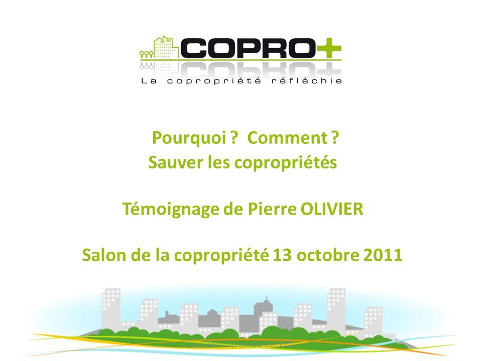 Présentation COPRO+, société de conseil créée en 2009 à Lyon, assiste le conseil syndical dans sa mission de contrôle de la gestion du syndic et doptimisation du fonctionnement de la copropriété.