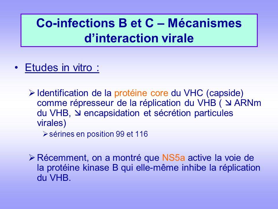 Etudes in vitro : Identification de la protéine core du VHC (capside) comme répresseur de la réplication du VHB ( ARNm du VHB, encapsidation et sécrétion particules virales) sérines en position 99 et 116 Récemment, on a montré que NS5a active la voie de la protéine kinase B qui elle-même inhibe la réplication du VHB.