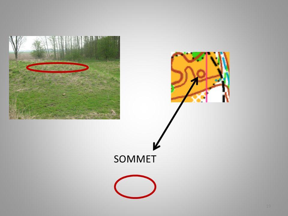 SOMMET 19