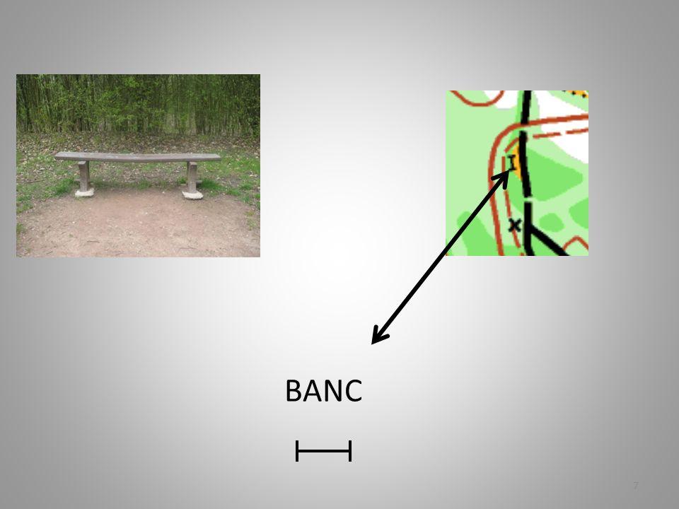 BANC 7