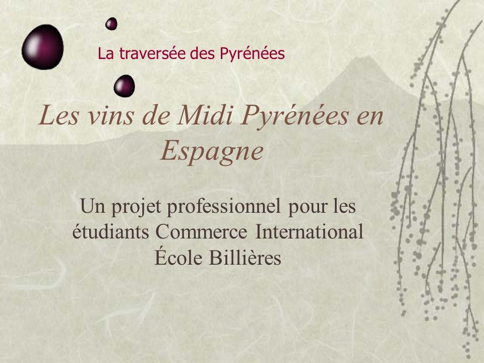 La traversée des Pyrénées Les vins de Midi Pyrénées en Espagne Un projet professionnel pour les étudiants Commerce International École Billières