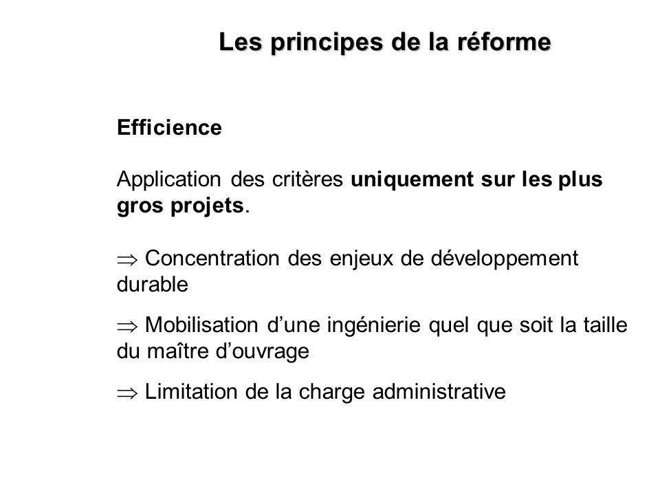 Efficience Application des critères uniquement sur les plus gros projets.