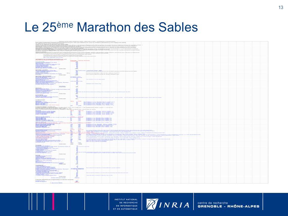 13 Le 25 ème Marathon des Sables