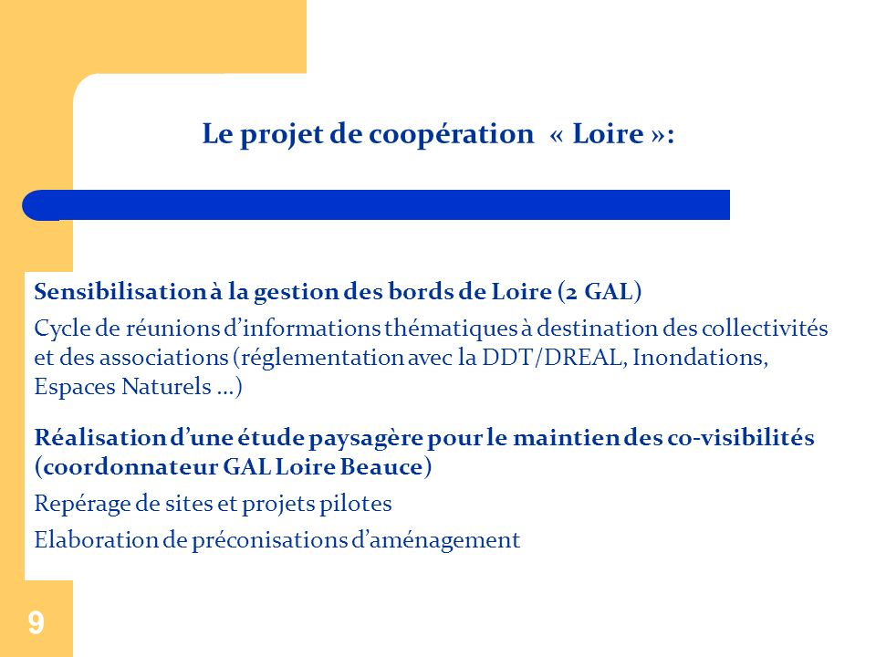 9 Sensibilisation à la gestion des bords de Loire (2 GAL) Cycle de réunions dinformations thématiques à destination des collectivités et des associati
