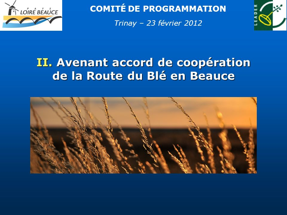 Proposition de modification des projets inscrits dans laccord de coopération Route du Blé en Beauce Proposition de modification des projets inscrits dans laccord de coopération Route du Blé en Beauce Intégration des préconisations de létude : Intégration des préconisations de létude : Recrutement dun chef de projet Route du Blé en Beauce à la Maison de la Beauce Lancement du site Internet dès 2012 Retrait du Pays Chartrain (passage de 5 à 4 partenaires) Retrait du Pays Chartrain (passage de 5 à 4 partenaires) Pas de modification majeure du montant Leader affecté par le GAL Loire Beauce (refonte des projets) : 46 553 44 955 Pas de modification majeure du montant Leader affecté par le GAL Loire Beauce (refonte des projets) : 46 553 44 955 Avenant accord de coopération de la Route du Blé en Beauce