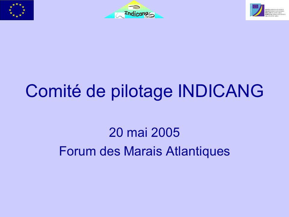 Comité de pilotage INDICANG 20 mai 2005 Forum des Marais Atlantiques