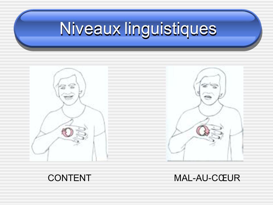 Niveaux linguistiques Structurels Creation lexicale CONTENT vs MAL_AU_COEUR Agglutination modale LOUP vs LOUP_AFFREUX