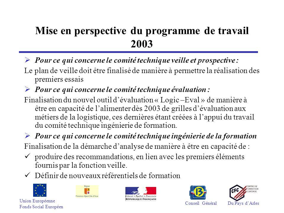 Union Européenne Fonds Social Européen Conseil GénéralDu Pays dArles Mise en perspective du programme de travail 2003 Pour ce qui concerne le comité t
