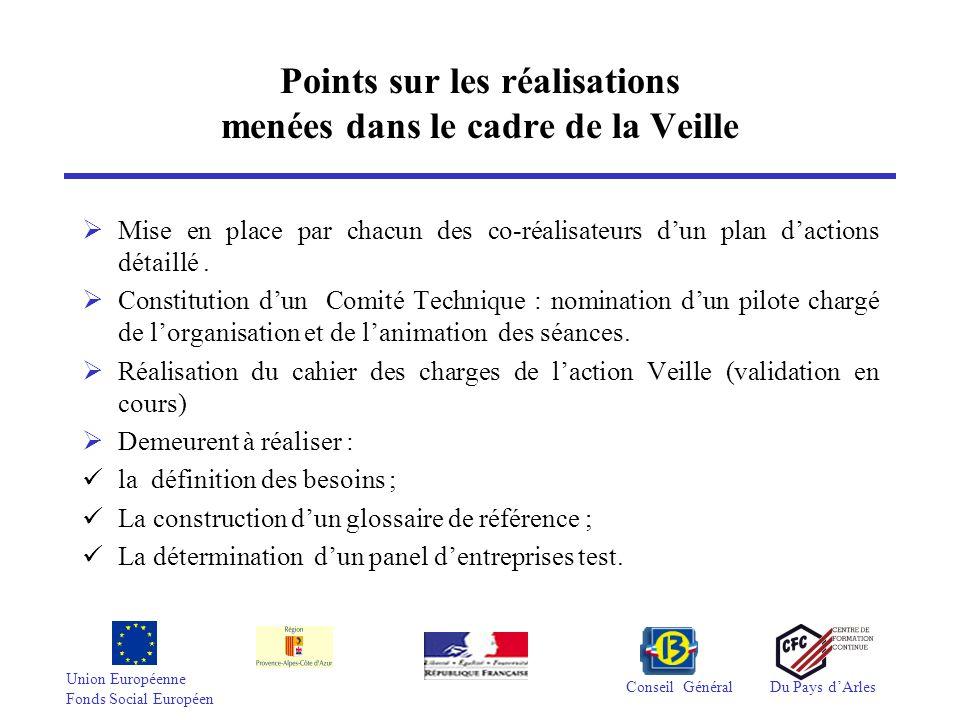 Union Européenne Fonds Social Européen Conseil GénéralDu Pays dArles Points sur les réalisations menées dans le cadre de la Veille Mise en place par c