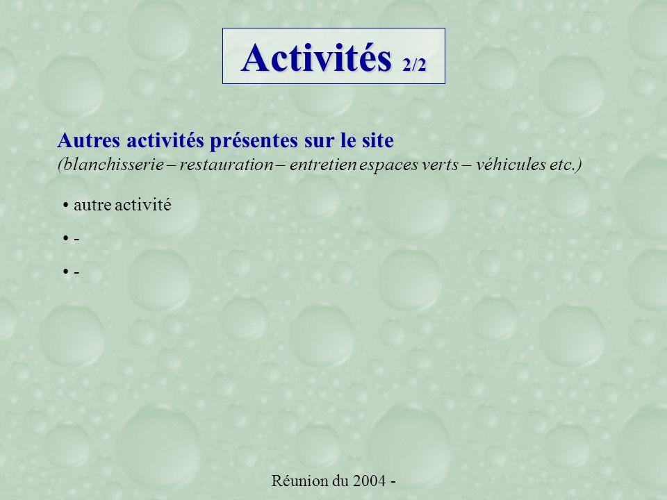 Réunion du 2004 - Autres activités présentes sur le site (blanchisserie – restauration – entretien espaces verts – véhicules etc.) autre activité - Activités 2/2
