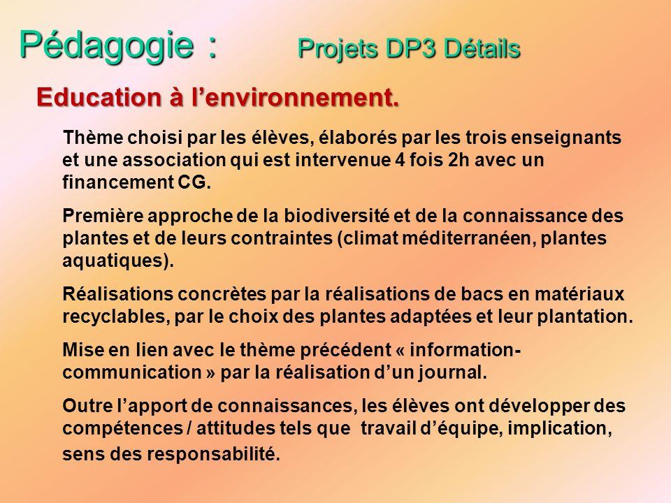 Pédagogie : Projets DP3 Détails Thème choisi par les élèves, élaborés par les trois enseignants et une association qui est intervenue 4 fois 2h avec u