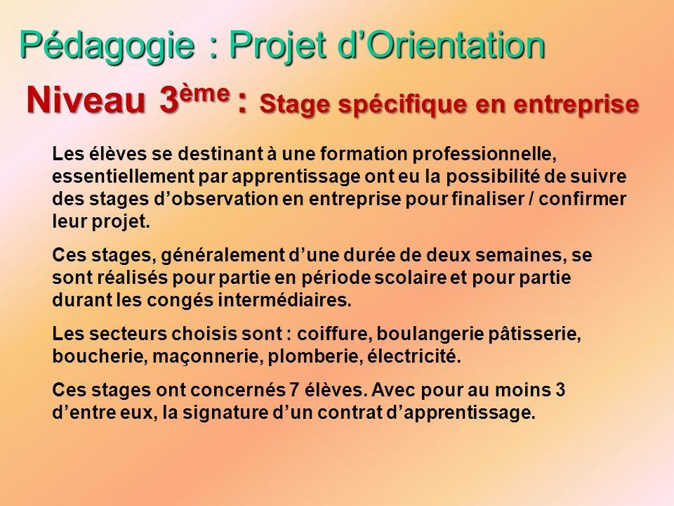 Pédagogie : Projet dOrientation Les élèves se destinant à une formation professionnelle, essentiellement par apprentissage ont eu la possibilité de su
