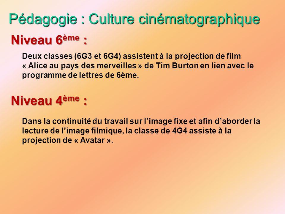 Pédagogie : Culture cinématographique Deux classes (6G3 et 6G4) assistent à la projection de film « Alice au pays des merveilles » de Tim Burton en li