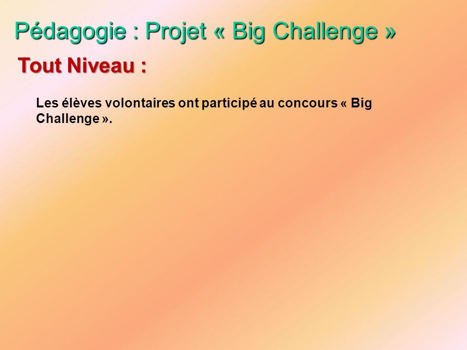 Pédagogie : Projet « Big Challenge » Les élèves volontaires ont participé au concours « Big Challenge ». Tout Niveau :