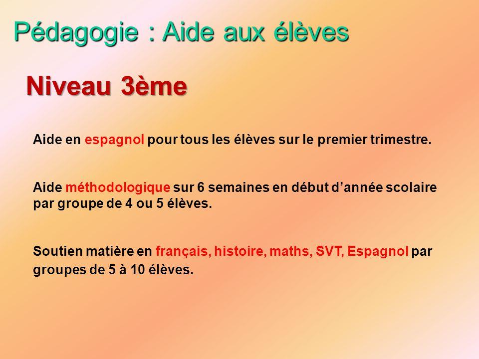 Pédagogie : Aide aux élèves Aide en espagnol pour tous les élèves sur le premier trimestre. Aide méthodologique sur 6 semaines en début dannée scolair