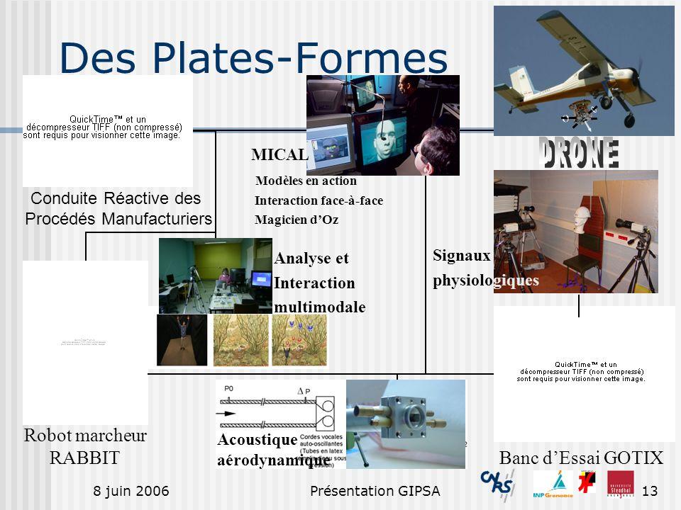 8 juin 2006Présentation GIPSA13 Des Plates-Formes Banc dEssai GOTIX Conduite Réactive des Procédés Manufacturiers Robot marcheur RABBIT MICAL Modèles