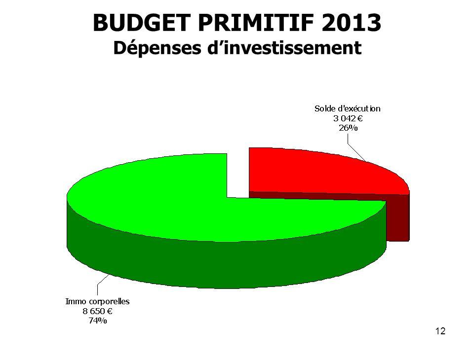 12 BUDGET PRIMITIF 2013 Dépenses dinvestissement