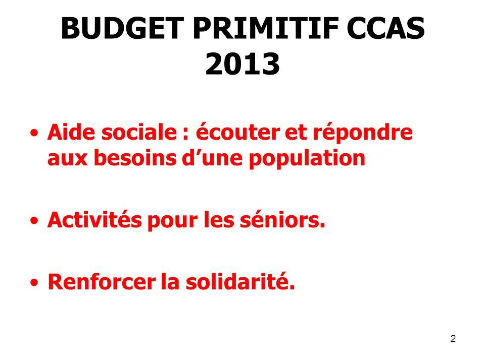 2 BUDGET PRIMITIF CCAS 2013 Aide sociale : écouter et répondre aux besoins dune population Activités pour les séniors. Renforcer la solidarité.