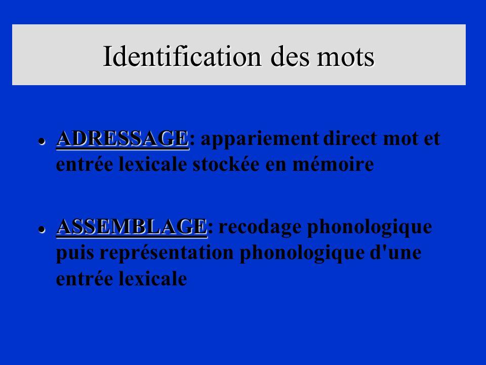 Identification des mots l ADRESSAGE l ADRESSAGE: appariement direct mot et entrée lexicale stockée en mémoire l ASSEMBLAGE l ASSEMBLAGE: recodage phon
