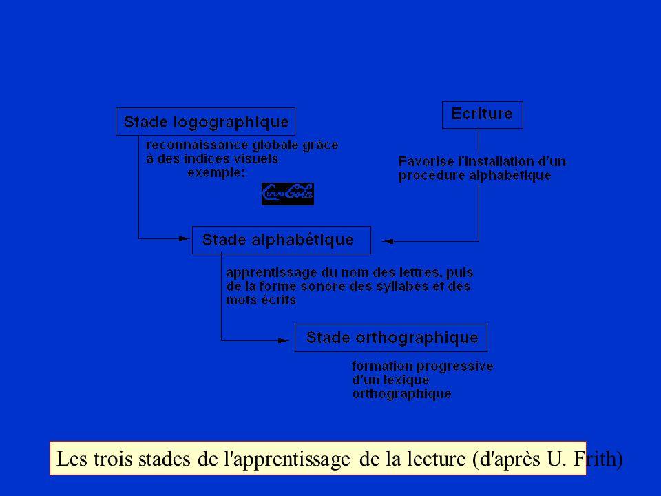 Les trois stades de l'apprentissage de la lecture (d'après U. Frith)