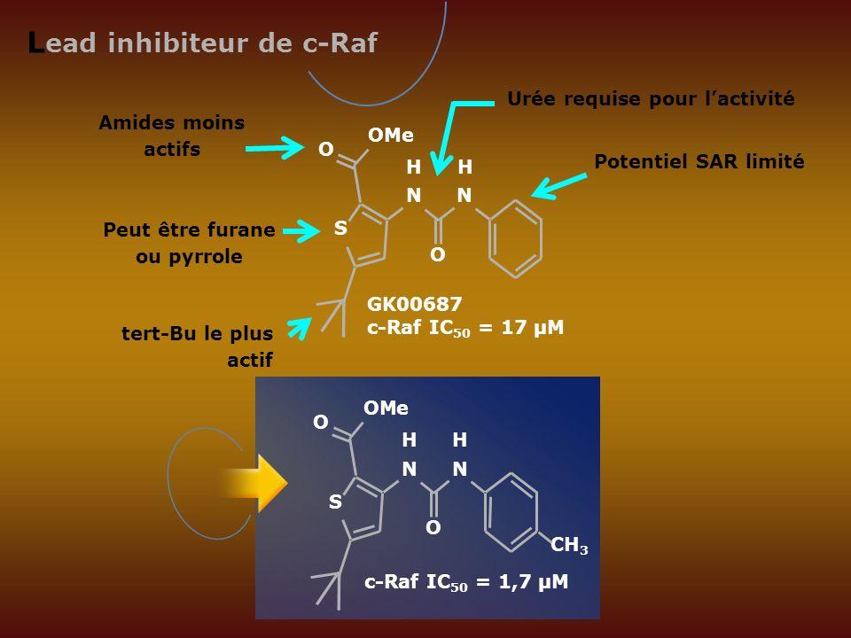 L ead inhibiteur de c-Raf GK00687 c-Raf IC 50 = 17 µM Amides moins actifs Peut être furane ou pyrrole tert-Bu le plus actif Potentiel SAR limité Urée