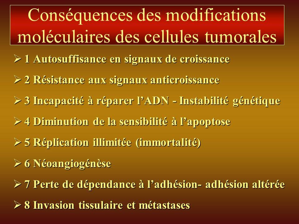 Conséquences des modifications moléculaires des cellules tumorales 1 Autosuffisance en signaux de croissance 1 Autosuffisance en signaux de croissance