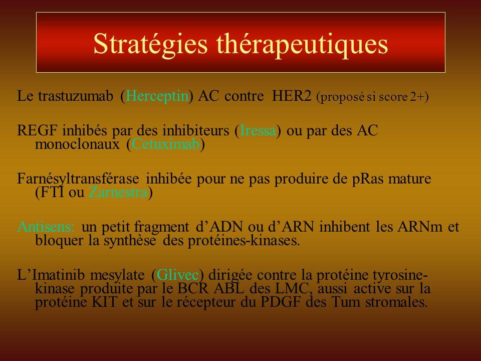 Stratégies thérapeutiques Le trastuzumab (Herceptin) AC contre HER2 (proposé si score 2+) REGF inhibés par des inhibiteurs (Iressa) ou par des AC mono