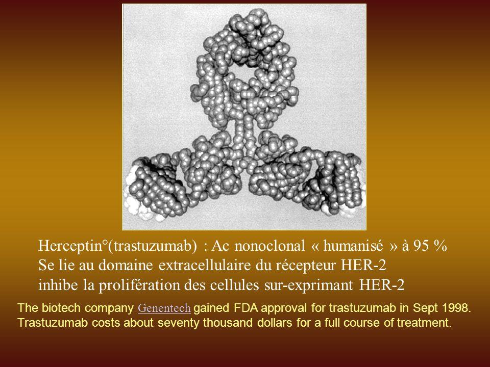 Herceptin°(trastuzumab) : Ac nonoclonal « humanisé » à 95 % Se lie au domaine extracellulaire du récepteur HER-2 inhibe la prolifération des cellules