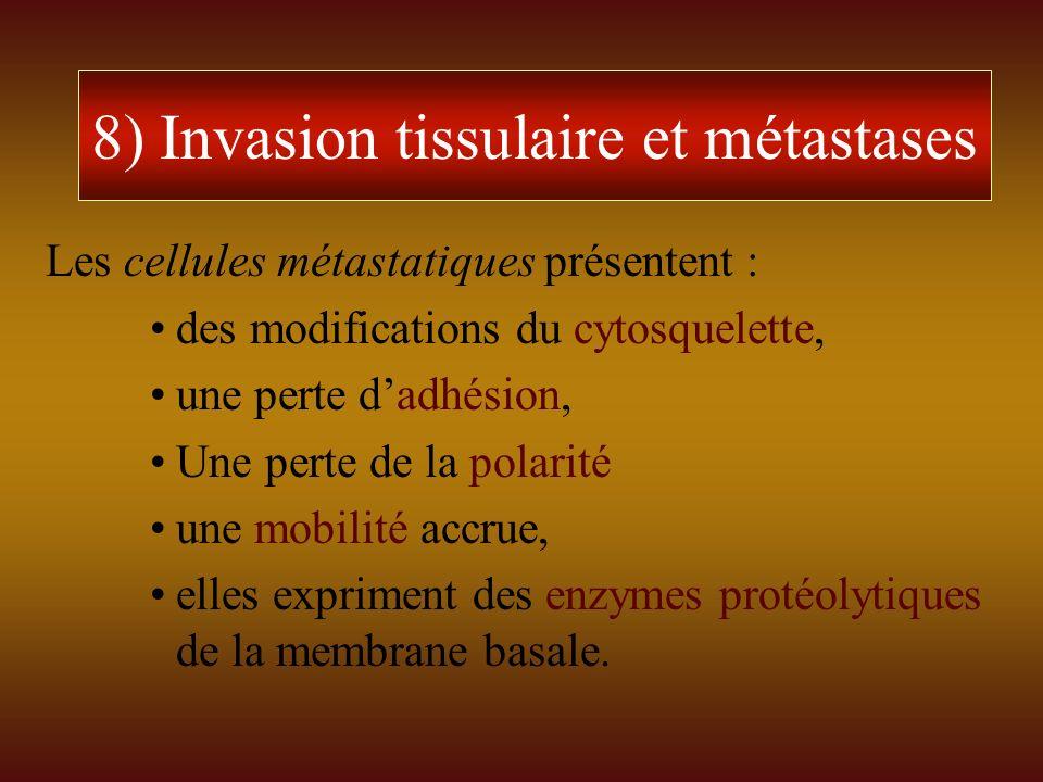 8) Invasion tissulaire et métastases Les cellules métastatiques présentent : des modifications du cytosquelette, une perte dadhésion, Une perte de la