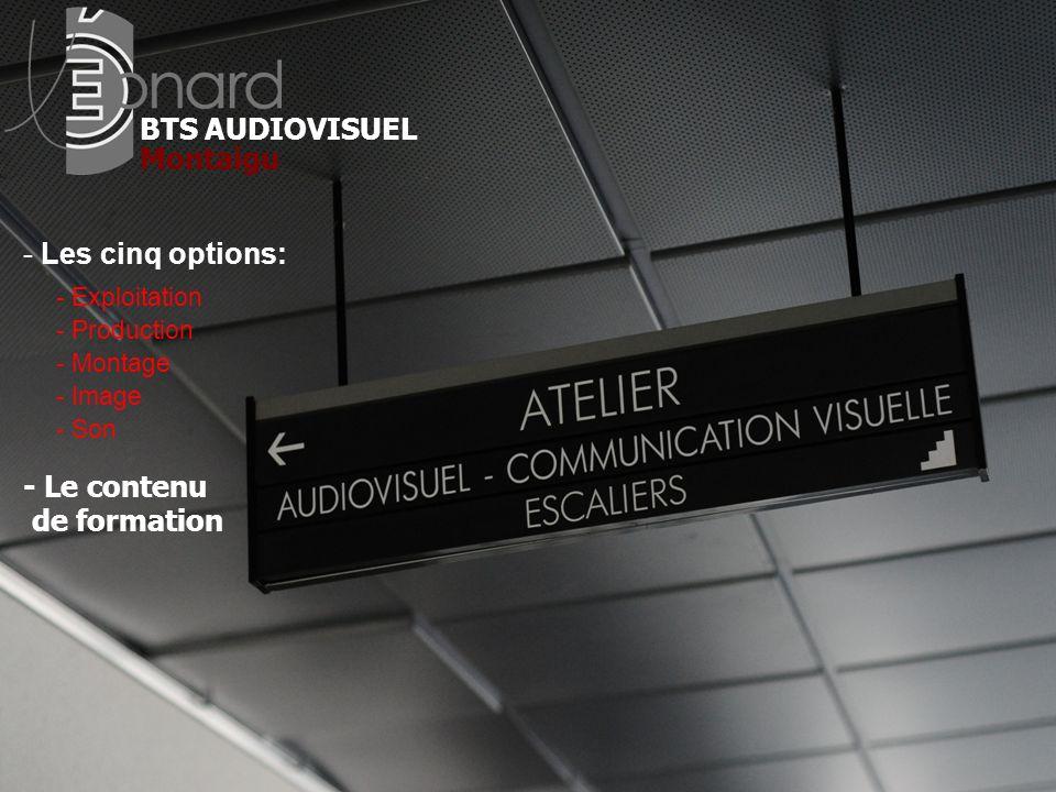 BTS AUDIOVISUEL - Les cinq options: - Le contenu de formation Montaigu - Exploitation - Production - Montage - Image - Son