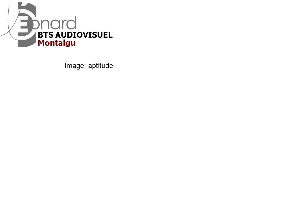 Image: aptitude Montaigu BTS AUDIOVISUEL