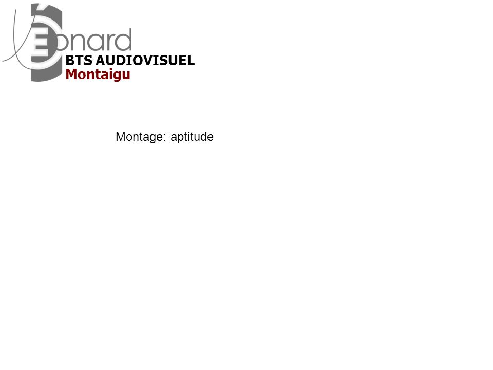 Montage: aptitude Montaigu BTS AUDIOVISUEL