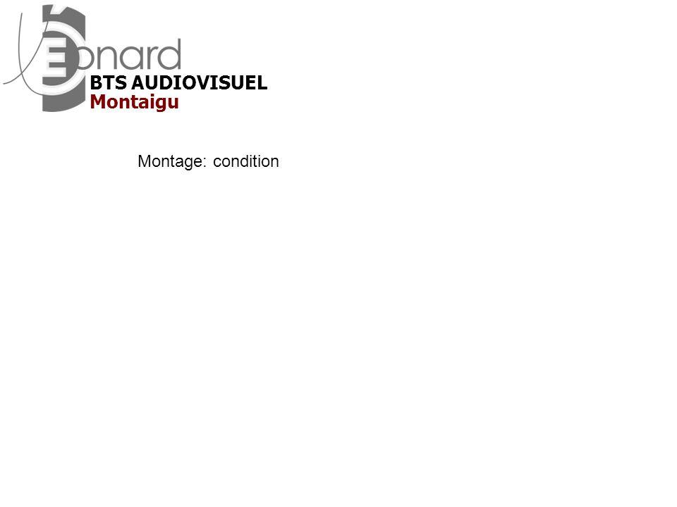Montage: condition Montaigu BTS AUDIOVISUEL
