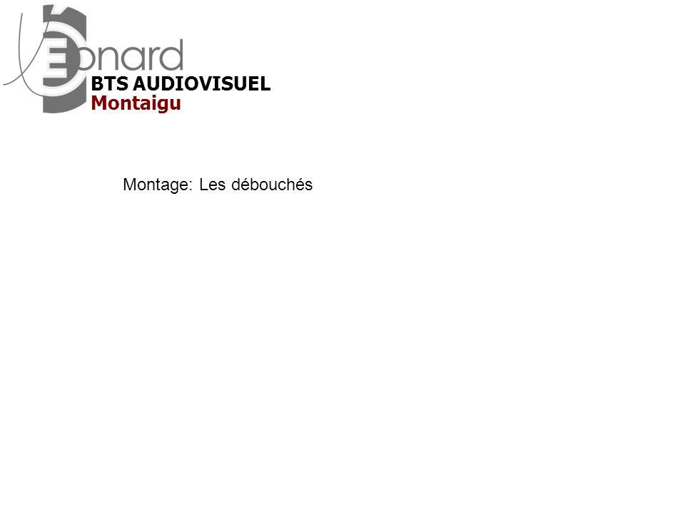 Montage: Les débouchés Montaigu BTS AUDIOVISUEL